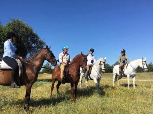 BIRDWATCHING ON HORSEBACK IN DOÑANA